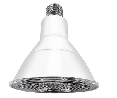 F5019-1IL   PAR38 LED